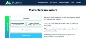 momentum protocol Didi Taihuttu